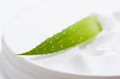 Aloe e crema di fronte Fotografie Stock Libere da Diritti