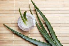 Aloe fresco ed organico vera Immagini Stock