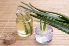 Aloe fresco ed organico vera Fotografie Stock