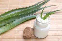 Aloe fresco ed organico vera Fotografia Stock