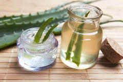 Aloe fresco ed organico vera Fotografie Stock Libere da Diritti