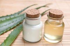 Aloe fresco ed organico vera Immagine Stock