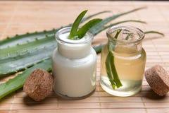 Aloe fresco ed organico vera Immagine Stock Libera da Diritti