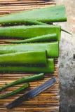 Aloe fresco Vera Immagini Stock