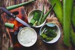 Aloe fresco Vera Fotografie Stock Libere da Diritti