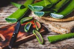 Aloe fresco Vera Fotografie Stock