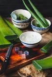 Aloe fresco Vera Immagine Stock