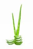 Aloe fresco vera della fetta Immagini Stock