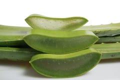 Aloe fresco Vera su fondo bianco Fotografia Stock