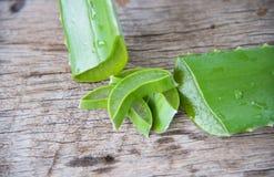 Aloe fresco vera su legno Fotografie Stock Libere da Diritti