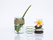 Aloe fresco vera in vetro trasparente con la pietra di zen Immagine Stock Libera da Diritti