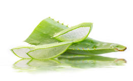 Aloe leaves Royalty Free Stock Photo