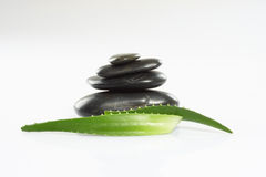 Aloe leaves and spa stones stock photos
