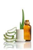 Aloe organico vera Fotografia Stock