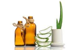 Aloe organico vera Immagine Stock