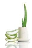 Aloe organico vera Immagini Stock