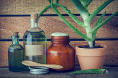 Aloe plant in pot, bottle of aloe vera essence and ointment. Aloe plant in flowerpot, bottle of organic aloe vera essence, cream or ointment and other products royalty free stock photo