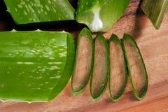 Aloe slice Royalty Free Stock Photo