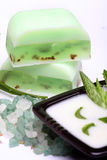 Aloe,  soap, moisturizer Stock Images