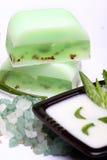 Aloe,  soap, moisturizer Stock Images