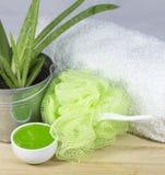 Aloe spa Royalty-vrije Stock Afbeelding