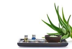 Aloe spa Royalty Free Stock Photography