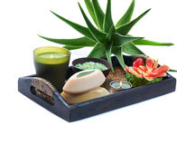 Aloe spa Stock Image