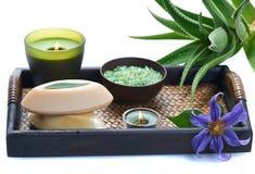 Aloe spa Royalty Free Stock Image