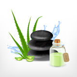 Aloe with spa stone Royalty Free Stock Images