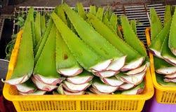 Aloe spesso Vera Leaves da vendere Fotografia Stock