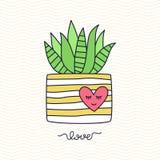 Aloe succulent διανυσματική απεικόνιση δοχείων λουλουδιών Στοκ Εικόνες