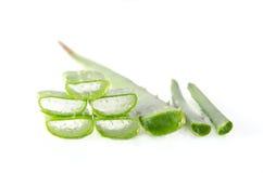 Aloe vera är en gelatinös vikt erhållande från en sort av aloe Royaltyfri Foto