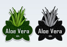 Aloe Vera 100% Seal Sticker. Great Classical Design of a seal certifying Aloe Vera products Stock Image