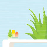 Aloe vera. The use of aloe vera health products Royalty Free Stock Photos