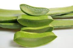 Aloe vera affettata Fotografia Stock Libera da Diritti