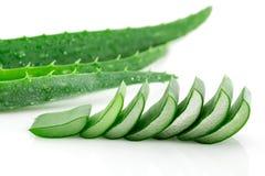 Aloe vera affettata su fondo bianco Fotografie Stock