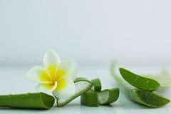 Aloe Vera affettata, su un fondo bianco per salute Fotografia Stock Libera da Diritti