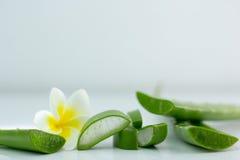 Aloe Vera affettata, su un fondo bianco per salute Immagini Stock