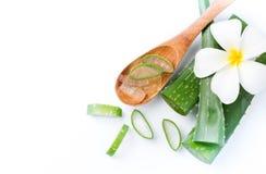 Aloe Vera affettata sul cucchiaio di legno Fotografia Stock Libera da Diritti