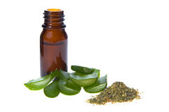 Aloe Vera - alternative Therapie stockfotografie