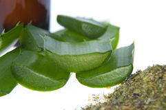 Aloe vera - alternative therapy Royalty Free Stock Image