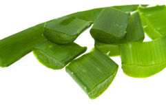 Aloe vera - alternative therapy Royalty Free Stock Photo