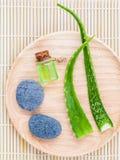 Aloe Vera auf natürlichen Badekurortbestandteilen der Steinbadekurszene Lizenzfreie Stockfotografie