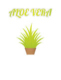 Aloe vera background Stock Photos