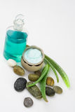 Aloe vera beauty products. Aloe plant, massage oil and cream Stock Images