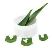 Aloe Vera-Blätter und Sahne Lizenzfreie Stockfotografie