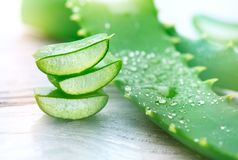 Aloe Vera closeup. Sliced Aloevera natural organic renewal cosmetics, alternative medicine. Organic skincare concept royalty free stock photo
