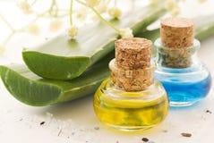 Aloe Vera con l'olio di massaggio Fotografia Stock