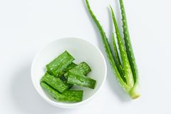 Aloe vera in contenitore bianco Fotografie Stock Libere da Diritti