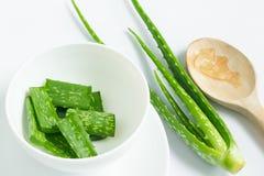 Aloe vera in contenitore bianco Fotografia Stock